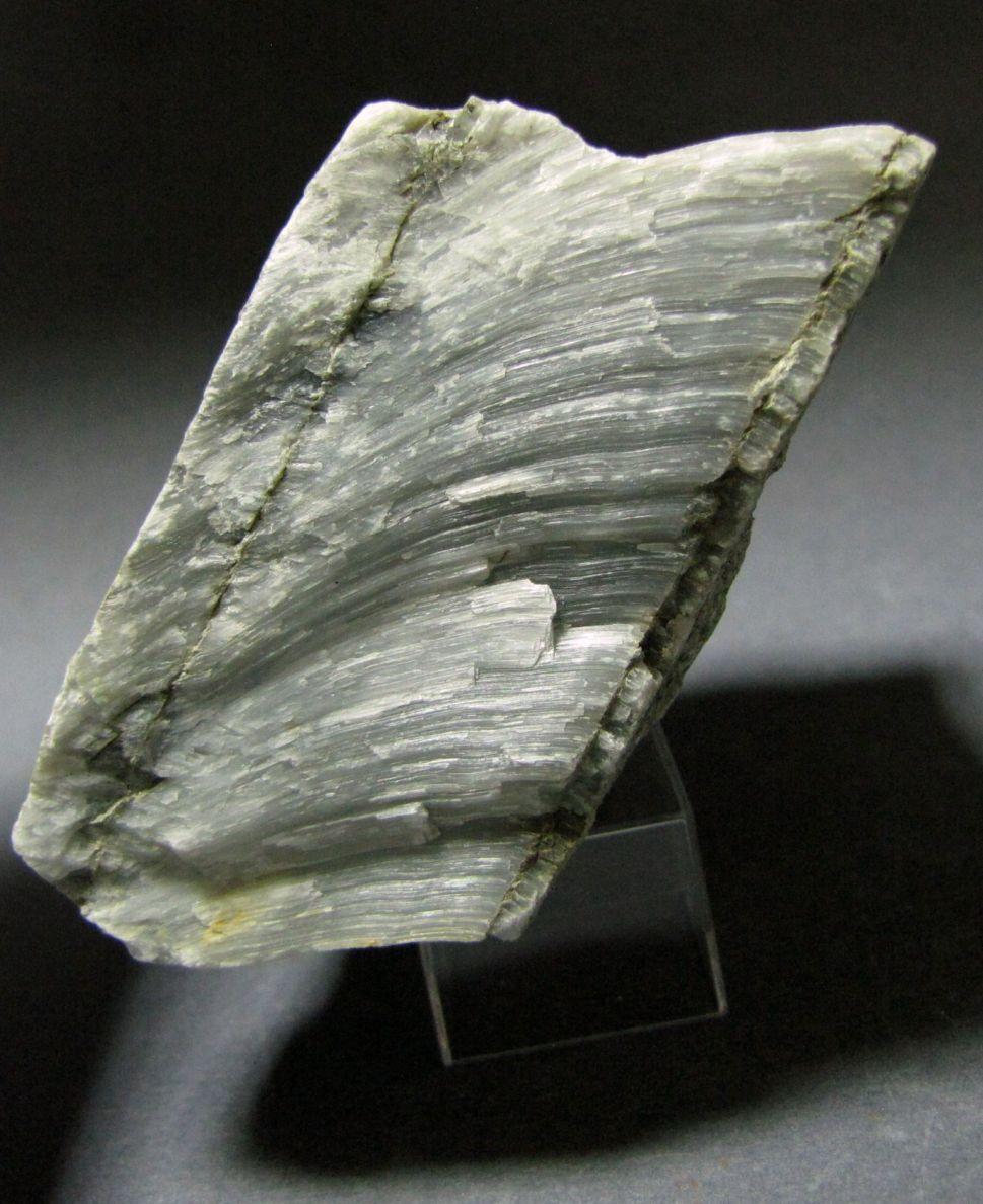 Резюме резюме образец для геолога